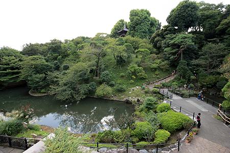 ハナジマパーティー 2015年9月27日(日)「ホテル椿山荘東京」 写真1