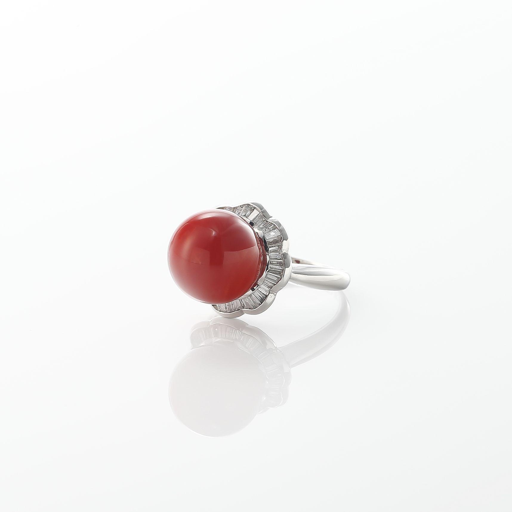 血赤珊瑚のリング 01